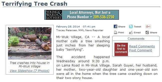 Tree-Crash