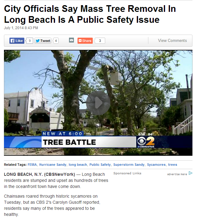 city-officials-say-mass-tree-removal-in-long-beach-is-a-public-safety-issue