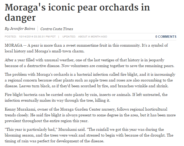 moragas-iconic-pear-orchards-danger