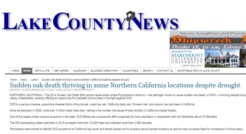 sudden-oak-death-thriving-in-some-northern-california-locations-despite-drought