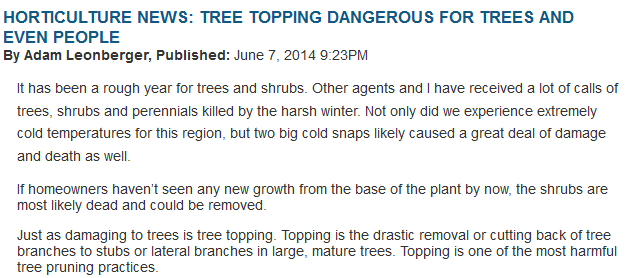 tree-topping-dangerous-for-trees-and-even-people