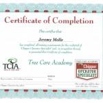 Certificate30001